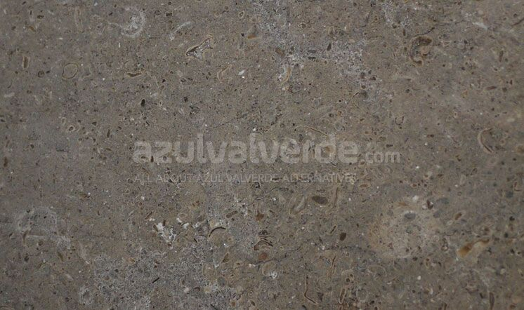 Gris Pardo Dark Limestone